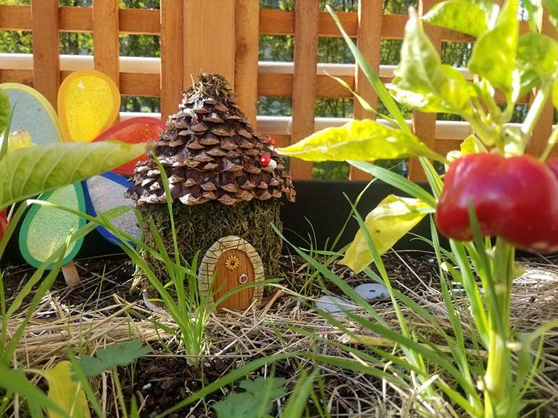 Fairy-House-800x600